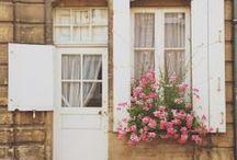 Cute ideas / by Patty Fm