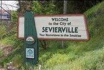 Sevierville / Fun things to do in Sevierville, TN Berry Springs Lodge www.berrysprings.com
