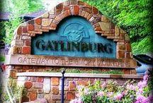 Gatlinburg / Things to do in Gatlinburg when you visit us Berry Springs Lodge www.berrysprings.com