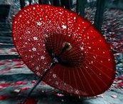Parasols and umbrella's
