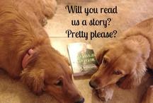My Fabulous Readers! / by Jody Hedlund