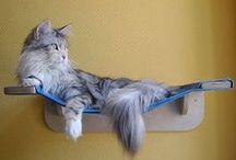 CAT.LOVER.ME