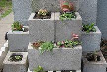 landscape,  plants ideas