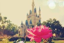 DISNEY / Mickey, Minnie, and Princesses live happily ever after here.