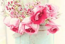 Shabby Chic Accessories /  Shabby Chic accessories for any room of your house