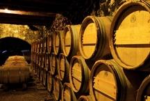 Greek Wines & Wineries