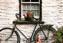 Bicycles / by Marlou McAlees