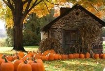 Fall / Halloween / by Jaline Eguillos-Johnson Lyons