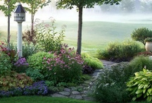 Green Thumb & outdoor inspiration  / by Carrie French