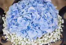 Bridal Bouquet inspiration / #flowerbouquets for your wedding  #weddingflowers #bridalbouquet #freshflower #bouquet