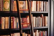 The Library / Learning in the seeing...