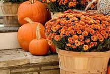 Fall Porch Decor / ideas for decorating the porch for fall