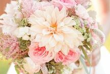 Blooming bouquets