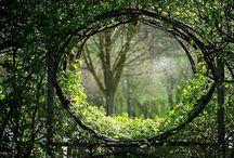 untamed garden / her heart was a secret garden and the walls were very high