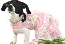 Canine Couture / Handmade-to-order pet couture
