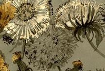 Flowers/plants / by Fiona Jones