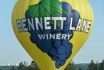 "UP, UP & AWAY! / ""Balloons Of The World / by Bennett Lane Winery"
