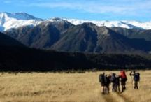 Off the beaten track / To see some of New Zealand's most stunning landscapes and find it's hidden gems, get off the beaten track and go exploring! For more ideas for getting off the beaten track in New Zealand, go to aatravel.co.nz