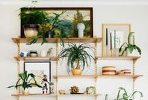 Nature Inspired Decor / Home decor, accents, furniture, art, home supplies and accesories inspired by the natural world.