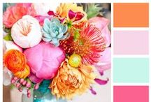 Colors / by Laura at The Turquoise Home