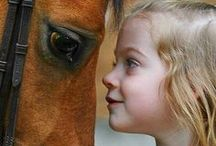 Girls and Horses / by Lisa Westerfield
