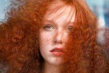 Flatten Frizz / Stop the harassment of frizzy hair.
