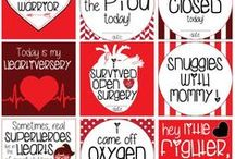 Heart Warriror / Heat Warrior Moms- pins to keep your little heart warrior baby safe and germ free. Also, pins to inspire and give you hope through quotes and other family stories.
