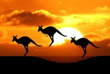 Awesome Australia / Australia is such an amazing place.  This board is to bring together photos and posts about Australia.