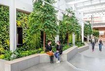 Green Walls / Green walls, gardens
