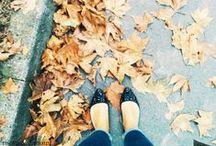 •SEASON: autumn