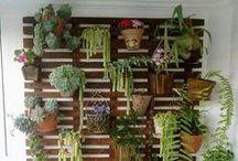 Erkély és növényzet