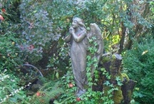 Angels and Cemeteries / by Julie Tiefenthaler