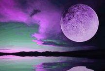 Purple purple / by Cindy Mitchell