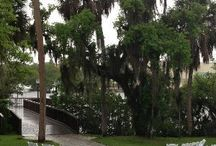 Edson Keith Mansion Weddings / The Edson Keither Mansion is an Southern mansion located in Sarasota with majestic oaks a brick patio for dancing and inside dining