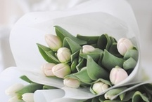marlaine ♥ flowers / if not fresh flowers, then virtual ones