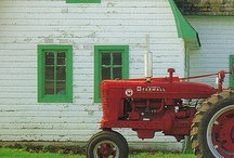 Farm / Some day... a farm! / by Tori Martinez