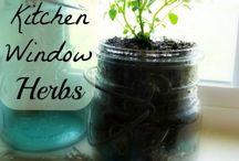 Cooking with Herbs & Seasonings