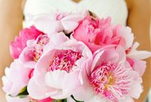 Floral Flow / Bridal Bouquet Stop and Sniff Some Pretty Flowers   Palettes Theme Color  / by Starlight Makeup