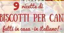 Cani - Biscotti e ricette | Dogs - treats and recipes / premi per cani, treats for dogs, dolcetti e biscottini per cani, dogs biscuits, ricette per cani