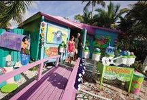 Matlacha island, Florida / Florida's historic fishing village where artists set up shops right next to bait shops. Spend the night in one of the cozy cottages or come spend the day. It's an island that will give you many happy memories to take home.