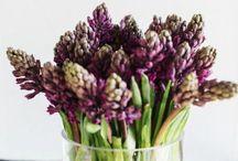 Flowers/Fleurs/Blomster