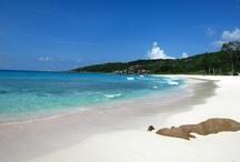 Seychellen / Flitterwochen Seychellen, Seychellen Urlaub, Seychellen Segeltörn, Seychellen Hotel Hopping, Seychellen Insel Hopping, Seychellen mit Stopover Abu Dhabi oder Stopover Dubai.