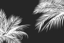 Designs - Patterns & Textures