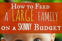 On a Budget / by Sarah DiFiore