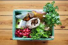 Food & Sustainability