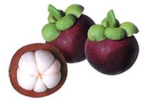 Mangosteen | Mangosteen Health Benefits / Improve your overall health with the many health benefits of mangosteen fruit. Known as the Queen of Fruits, mangosteen provide essential vitamins, minerals and powerful xanthone antioxidants to improve your health. Learn more about #mangosteen and #xanthones with this board.