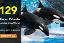 Ofertas Seaworld Orlando / Tiquetes y Paquetes de Viaje con Super Descuentos para SeaWorld Orlando....