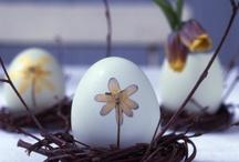Easter Decoration / by Gyöngyi Nagy