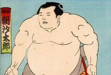 Sumo & Samurai / Makuuchi (幕内) is the top division – fixed at 42 wrestlers; Jūryō (十両), second highest division - fixed at 28 wrestlers; Makushita (幕下) third highest division – Currently there are 120 wrestlers (60 ranked on the East and 60 on the West); Sandanme (三段目) fourth highest division - Typically set at 200 wrestlers; Jonidan (序二段) fifth highest division - commonly around 200-250 wrestlers; Jonokuchi (序ノ口 or 序の口) lowest division - varies in size and typically includes between 40 and 90