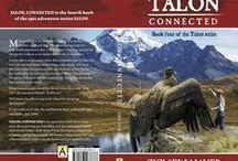 TALON, CONNECTED  / Talon, connected is the 4th instalment of the Talon series. / by Gisela Sedlmayer